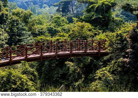 Wooden Footbridge Over Gully In Verdant Lush Recreational Forest On Sunny Afternoon.