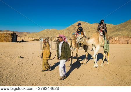 Hurghada, Egypt- Feb 2 , 2020:  Tourist rides camel  with help of Egyptian people in desetrt  near Hurghada, Egypt.