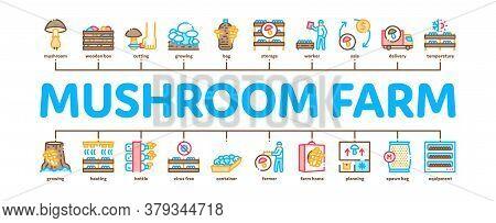 Mushroom Farm Plant Minimal Infographic Web Banner Vector. Mushroom Farm Agriculture Planting And Ha
