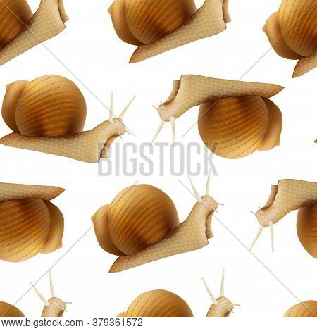 Realistic 3d Detailed Slimy Snail With Shell Seamless Pattern Background On A White Symbol Of Female
