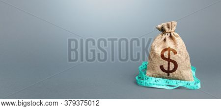 Dollar Money Bag And Measuring Tape Meter. Assessment Of Capital. Declaration Of Income, Illegal Enr
