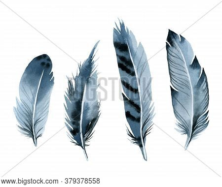 Bird Feathers, Set Blue Watercolor Hand Drawing