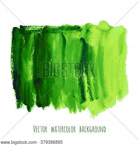 Greenery Vector Hand Paint Watercolor Texture Background. Strokes, Splashes, Spots And Stains Isolat