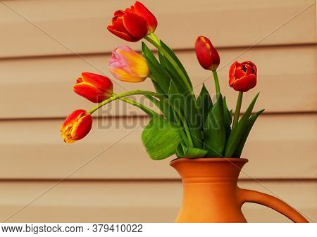 A Bouquet Of Tulip Flowers In Clay Vase, Outdoors.