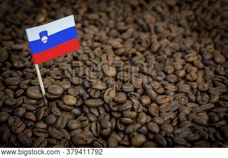 Slovenia Flag Sticking In Roasted Coffee Beans. The Concept Of Export And Import Of Coffee