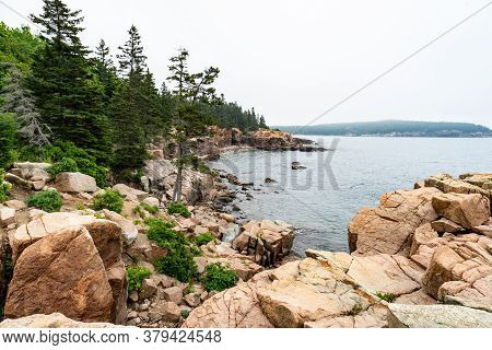 Rugged Granite Rocks And Lush Green Trees Line The Maine Coast In Acadia National Park.