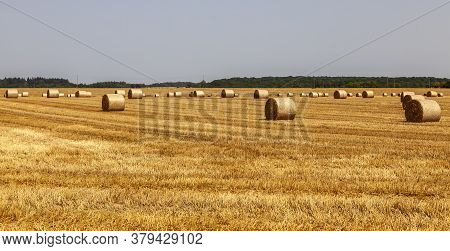 Field Landscape With Hay Bales In Summer.
