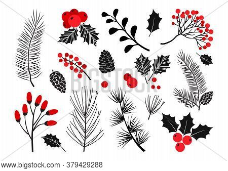 Christmas Vector Plants, Holly Berry, Christmas Tree, Pine, Leaves Branches, Holiday Decoration, Win