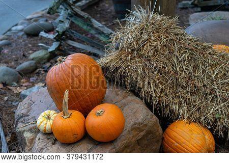 Three Pumpkins Sitting By Bail Of Hay