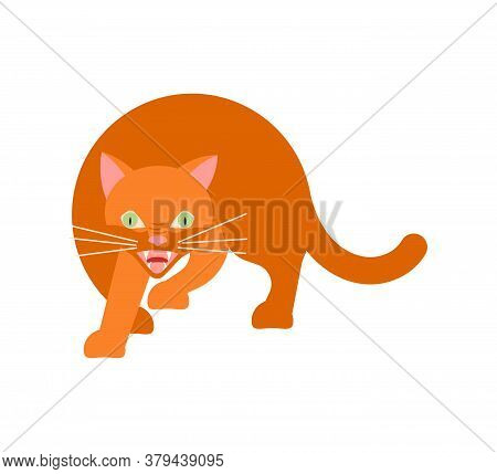 Playful Ginger Cat Cautiously Sneaks Steals. Square Card With Funny Kitten In Flat Design. Happy Cat