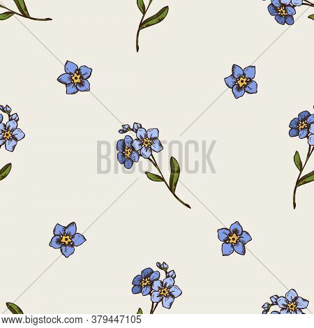 Seamless Pattern With Hand Drawn Colored Forget Me Not Flower Stock Illustration