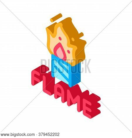 Firework Flame Icon Vector. Isometric Firework Flame Sign. Color Isolated Symbol Illustration