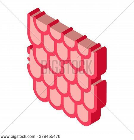 Shingles Roof Icon Vector. Isometric Shingles Roof Sign. Color Isolated Symbol Illustration