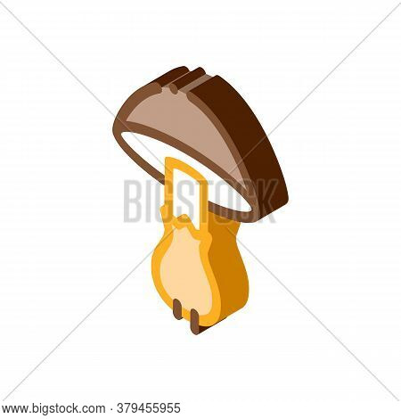 Mushroom Vegetable Icon Vector. Isometric Mushroom Vegetable Sign. Color Isolated Symbol Illustratio