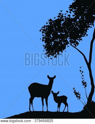 Drawing Or Sketch Of Young And Adult Deer Standing During Evening In A Dark Tree And Blue Sky Backgr