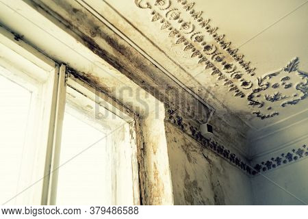Rain Water Leaks On The Ceiling Causing Damage, Peeling Paint And Moldy. - Image