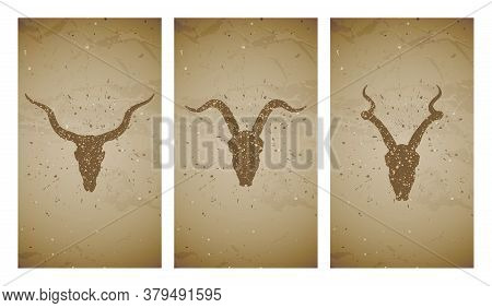 Vector Set Of Three Illustrations With Grunge Silhouettes Skulls Antelopes And Goat On Old Texture B