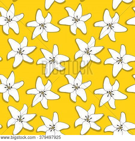 Abstract Hand Drawn Lilly Flower Seamless Pattern Background.  Illustration