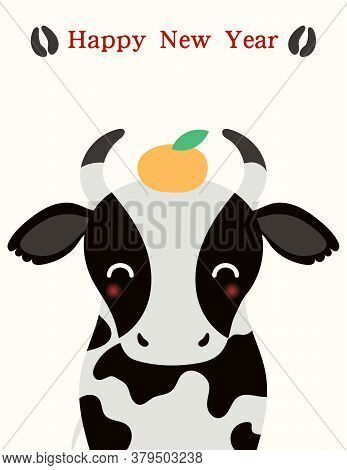 2021 Chinese New Year Vector Illustration With Cute Black And White Ox, Mandarin Orange, Hoof Prints