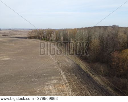 Agricultural Field Near The Forest, Aerial View. Landscape.