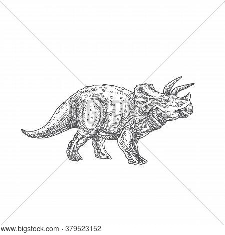 Prehistoric Dinosaur Doodle Vector Illustration. Hand Drawn Triceratops Reptile Engraving Style Draw
