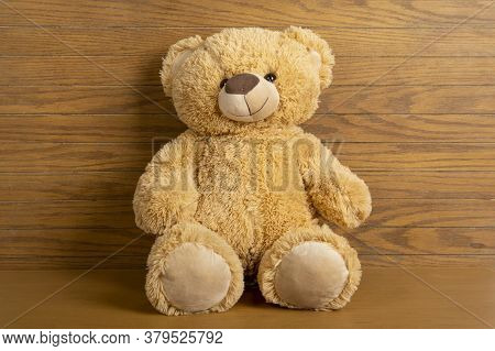Teddy Bear Seated Indoors With A Wooden Floor And Wall.