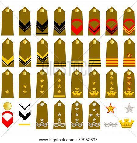Straps Italian Army