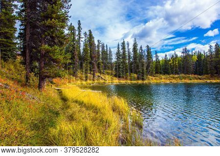 Rocky Mountains of Canada. Quiet shallow lake surrounded by forest. Yellow dry autumn grass around shallow lake. The concept of ecological, active and photo tourism
