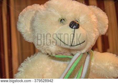 Cute Plush White Bear With Scarf, Childrens Soft Toy