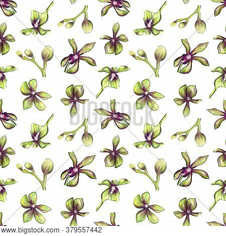Seamless Botanical Pattern Of An Orchid On A White Background. Beautiful Botanical Illustration Of O