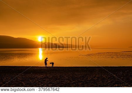 This Is A Picture Of A Man And A Boy Playing With A Metal Detector One Evening At The Beach At Whisk