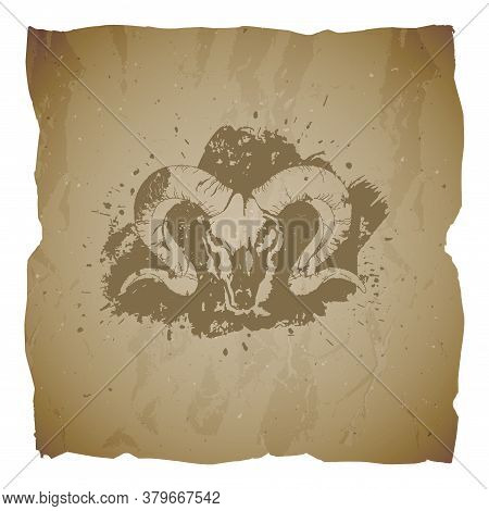 Vector Illustration Of Hand Drawn Skull Wild Ram And Grunge Elements On Old Torn Edges Background. T