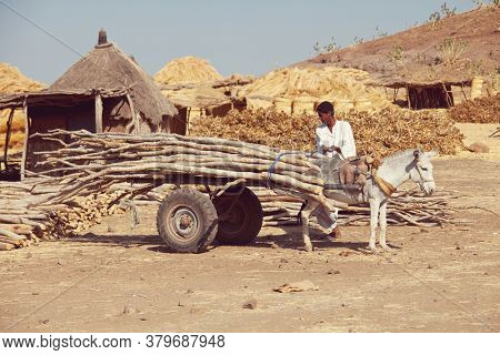 WADI HALFA, SUDAN - JANUARY 07, 2010: Sudanese peasant transportation  firewood on donkey . Sudan remains one of the least developed countries in the world.