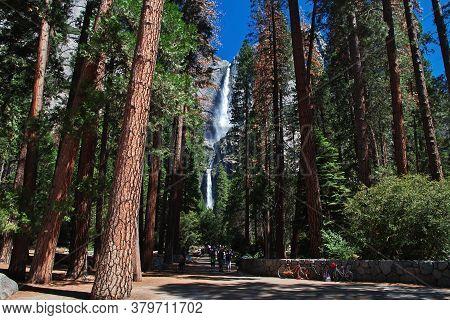 Yosemite / United States - 11 Jul 2017: Yosemite National Park In California, Usa
