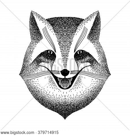 Sly Fox Smiles. Black And White Sketch For Tattoo, Poster, Print Or T-shirt. Retro Vintage Hipster S