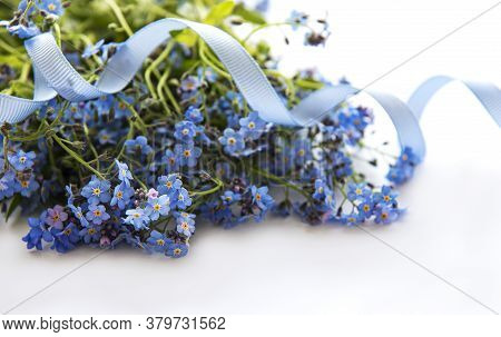 Forget-me-not Flowers With Blue Ribbon  Isolated  On White  Background