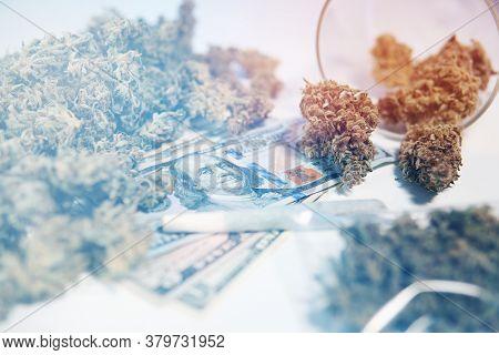 Sativa Medical Health. Cbd Thc Herb. The Pot Buds. Money Weed. Cannabis Money Black Market.