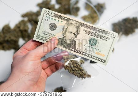 Cbd Thc Herb. The Pot Buds. White Background. Cannabis In Economics. Money Weed.