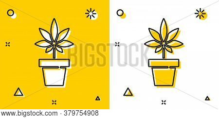 Black Medical Marijuana Or Cannabis Plant In Pot Icon Isolated On Yellow And White Background. Marij