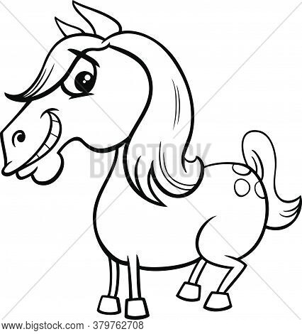 Black And White Cartoon Illustration Of Funny Horse Or Pony Farm Animal Character Coloring Book Page