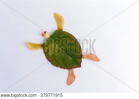 Easy Nature Craft For Kids, Turtle Made From Leaves, Ideas For Autumn Craft