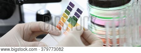 Gloved Hands Holding Paper To Test Soil Acidity. Litmus Paper Shows Acidity, Chemical Analysis. Soil