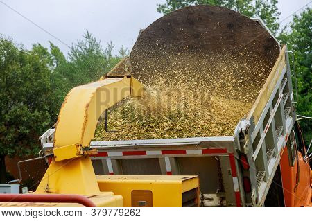 Wood Chipper Blowing Tree Branches Cut A Portable Machine To The Back Of A Truck After An Unexpected