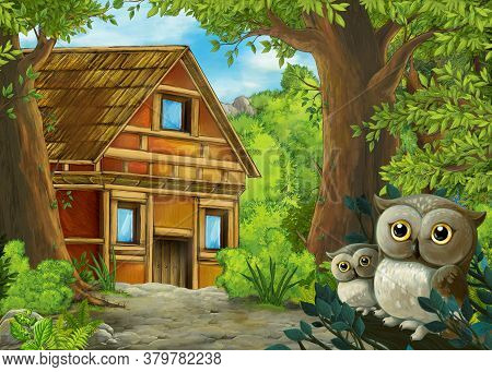 Cartoon Scene With Owls In The Forest And Path To Farm Ranch - Illustration