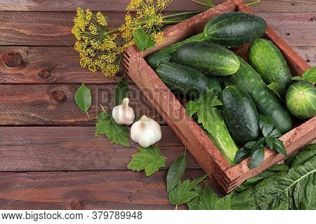 Cucumbers And Ingredients For Pickling Them, The Concept Of Healthy And Natural Food. Cooking Pickle