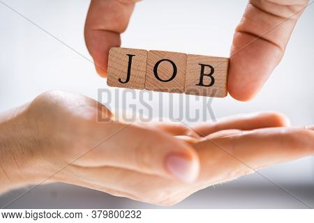 Job Search. Career Consultant Protecting Job Seeker