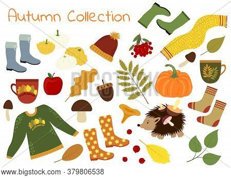 Collection Of Autumn Vector Pictures. A Set Of Autumn Items - Leaves, Pumpkin, Sweater, Scarf And Mo