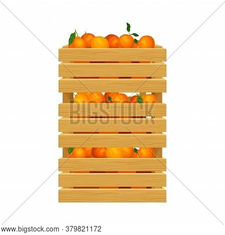 Oranges In Wooden Crates As Ripe Fruit Harvesting For Juice Production Vector Illustration