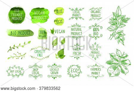 Vector Natural Product Signs Set Isolated On White Background, Organic Foods, Healthy Eating, Hand D