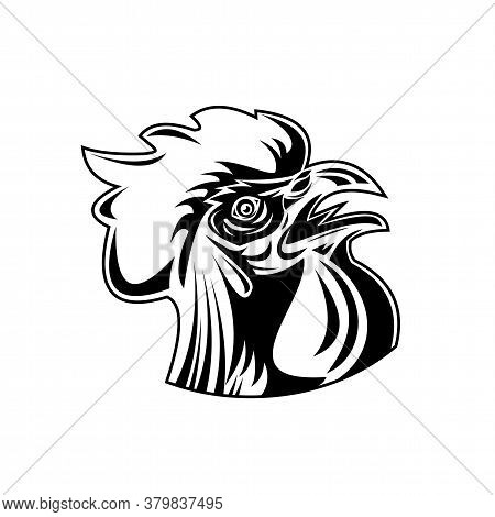 Retro Style Illustration Of Head Of A Rooster, Jungle Fowl Or Cockerel, An Adult Male Chicken Gallus
